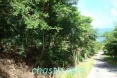 chemin-potier-02962