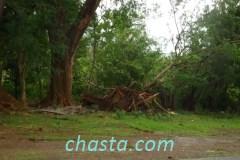 cyclone-earl-02890