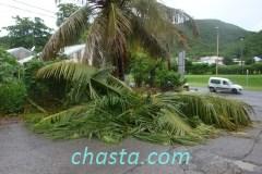 cyclone-earl-02898
