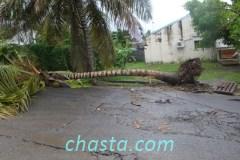 cyclone-earl-02899