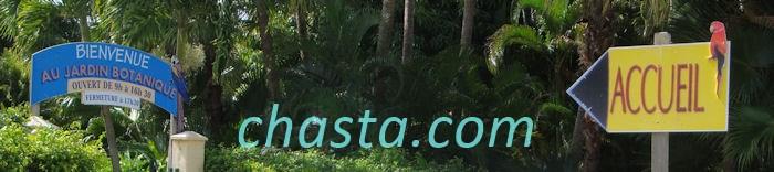 jardin-botanique-02208