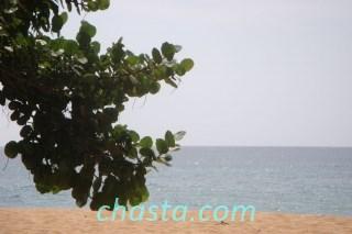 plage-grande-anse-02856