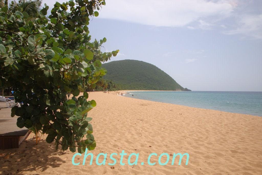 plage-grande-anse-02848
