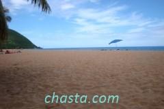 plage-grande-anse-02131