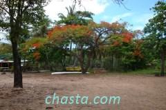 plage-grande-anse-02134