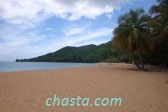 plage-grande-anse-02138