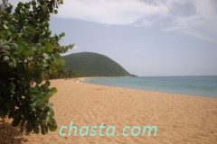 plage-grande-anse-02849