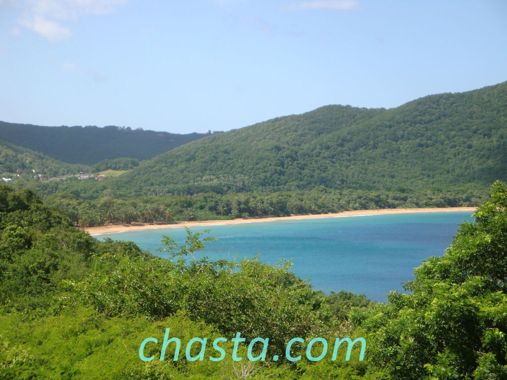 Deshaies Guadeloupe sur Annuaire Bunny
